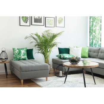 Living room Urban Jungle 4