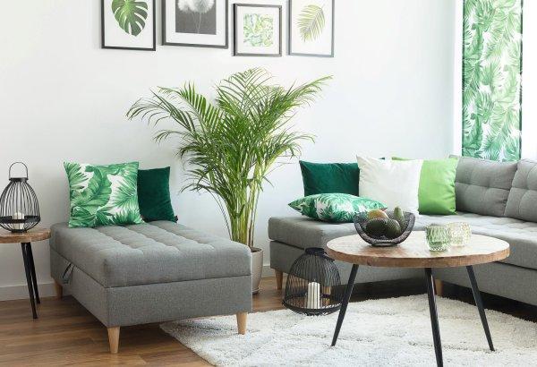 Fresh&Cosy - salon Urban Jungle